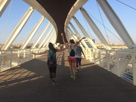 """bridge to the """"huge"""" tech park"""