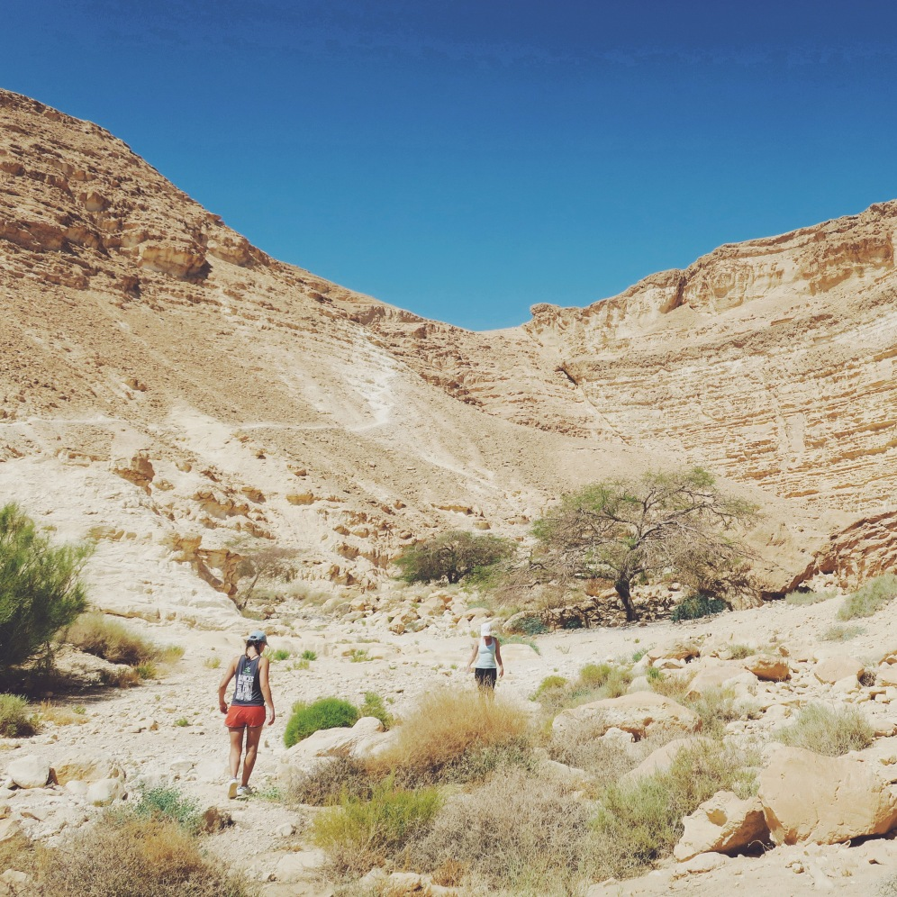 Hannah R. and Mimi hiking in the Negev