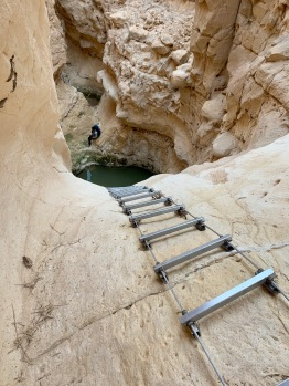 ladders + waterholes + descents = ugh
